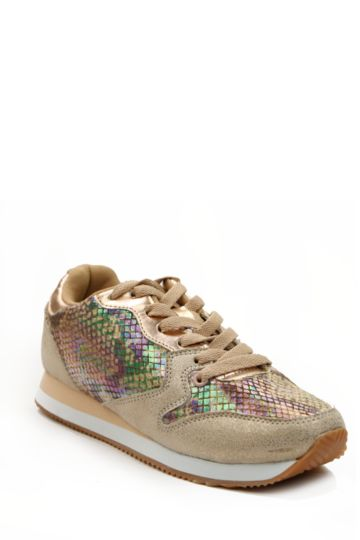 Holographic Trainer
