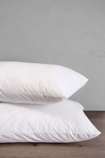 Percale Hollow Fibre Standard Pillow