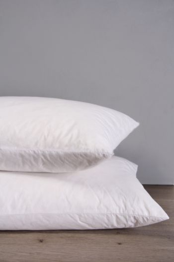 Feather Cotton Standard Pillow