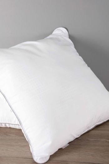 Feather Like Soft Touch Continental Pillow