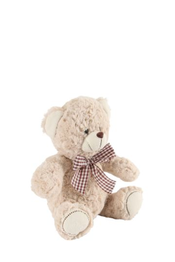 Teddy Soft Toy