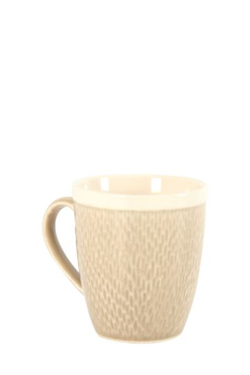 Stoneware Crackle Mug