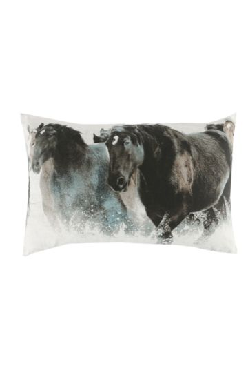 Printed Stallion 40x60cm Scatter Cushion