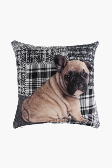 Printed Digital Dog Scatter Cushion, 50x50cm
