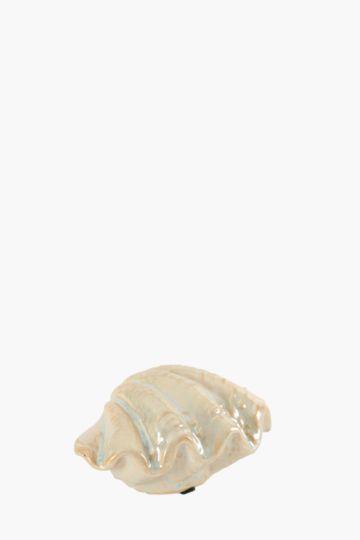 Pearlised Ceramic Shell