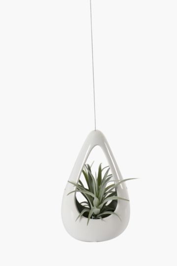 Hanging Airplant In Teardrop Pot