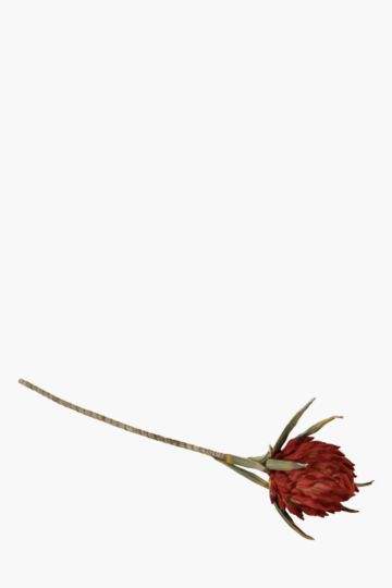 Foam Protea Single Stem