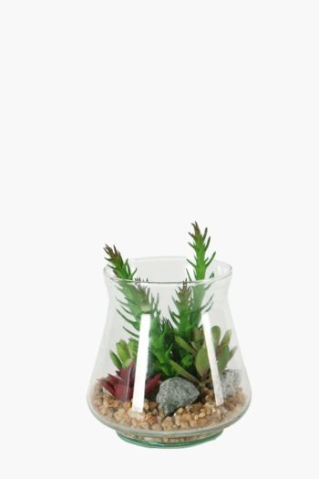 Oasis In Curved Glass Pot