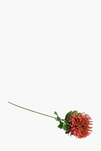 Spider Mum Single Stem