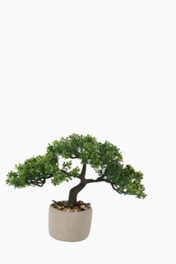 Bonsai Tree In Crackle Pot
