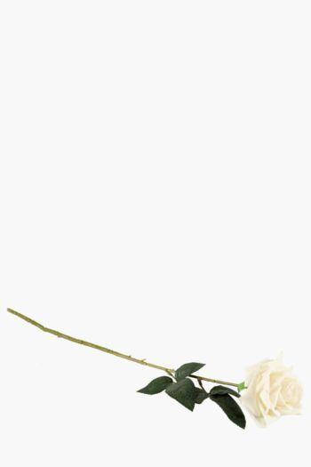 Rose Single Stem