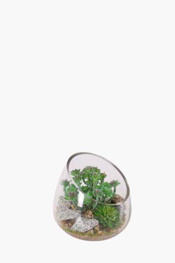 Sedum In A Slant Glass Vase
