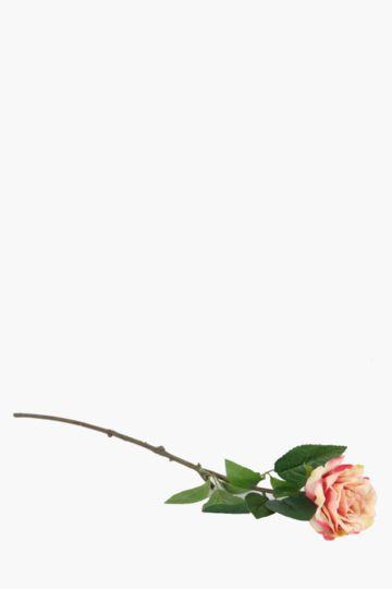 Garden Rose Single Stem