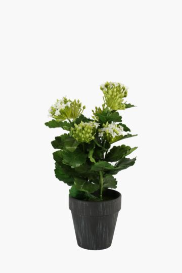 Flowers In Slate Pot