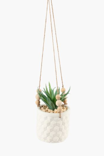 Hanging Agave In Textured Pot