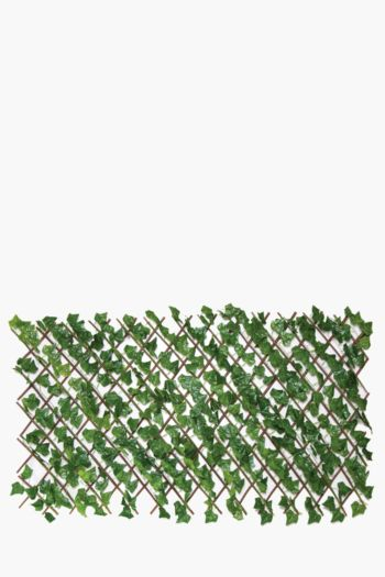 Ivy Privacy Trellis Small
