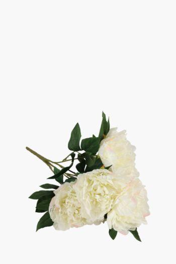Freesia Flower Bunch