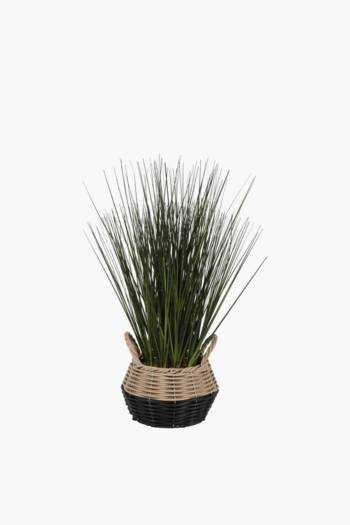 Grass In Basket