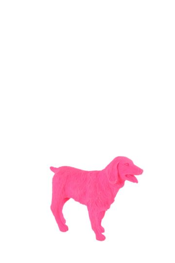 Dog Shaped Eraser