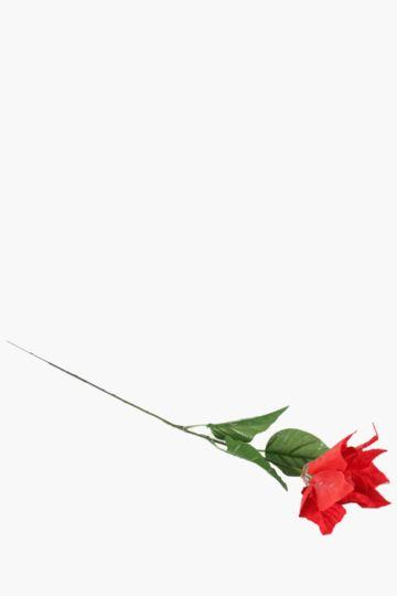 Poinsettia Single Stem