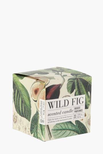 Wild Fig Fragranced Candle Box Set