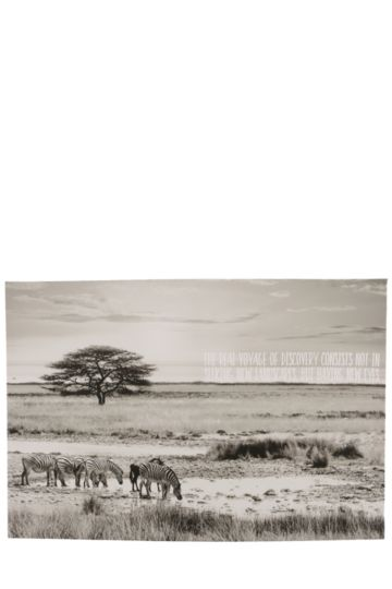 Africa Land Scape 40x60cm Wall Canvas