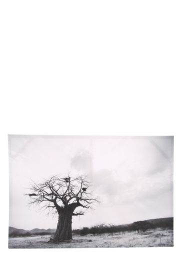Statement Tree 60x90cm Wall Canvas