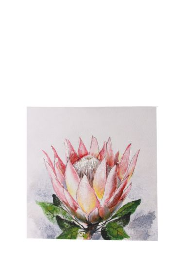 100% Hand Painted Protea 60x60cm Wall Canvas