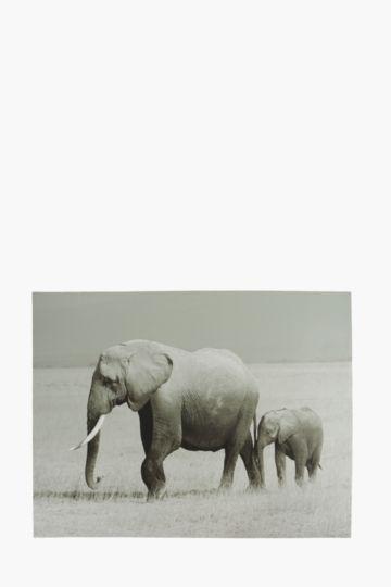 Strolling Elephants 120x90cm Wall Canvas