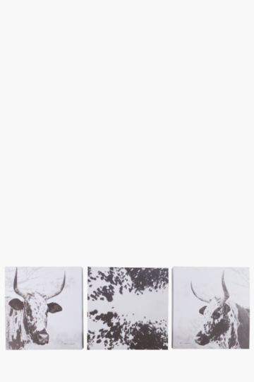 Set Of 3 Nguni Wall Art