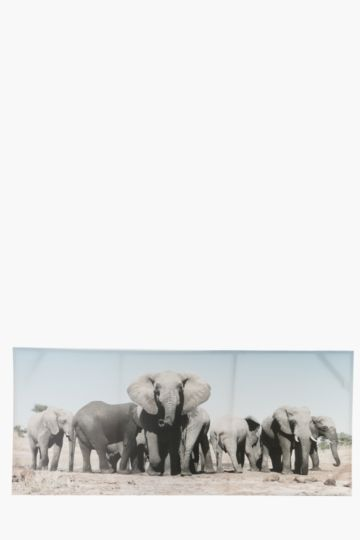 Elephant Herd 170x70cm Wall Canvas