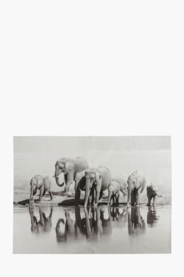 Elephant Herd 120x90cm Wall Canvas