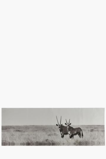 Gemsbok 135x45cm Wall Art