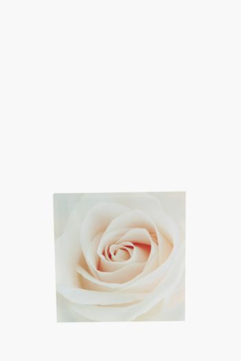 Printed Blush Rose 40x40cm Wall Art