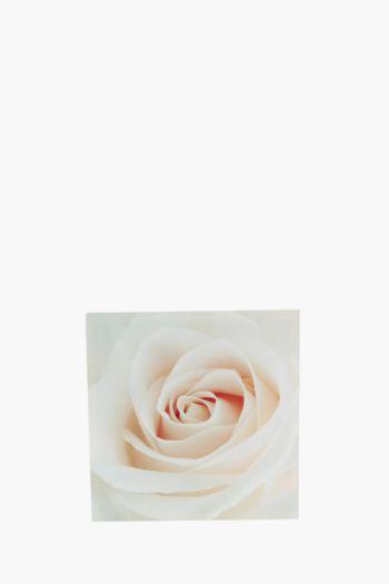 Printed Blush Rose 40x40cm Wall Art