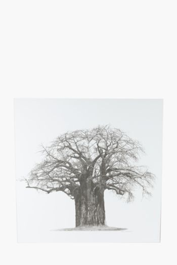 Printed Tree 100x100cm Wall Canvas