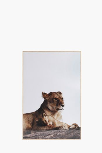 Framed Glossy Lion 60x90cm Wall Art