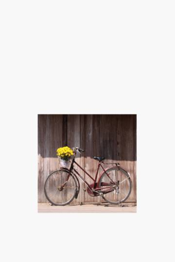 Printed Bicycle 40x40cm Wall Art