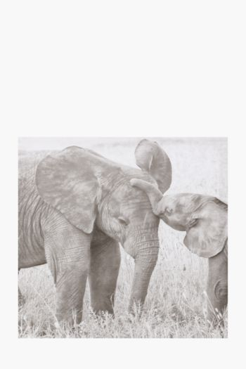 Printed Elephants 40x40cm Wall Art