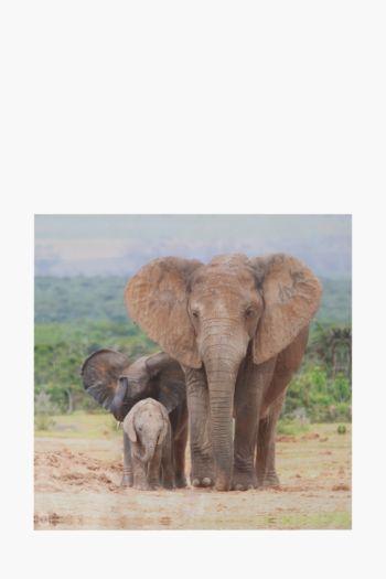 Printed African Elephants 100x100cm Wall Art