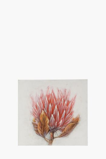 Hand Painted Protea 100x100cm Wall Canvas