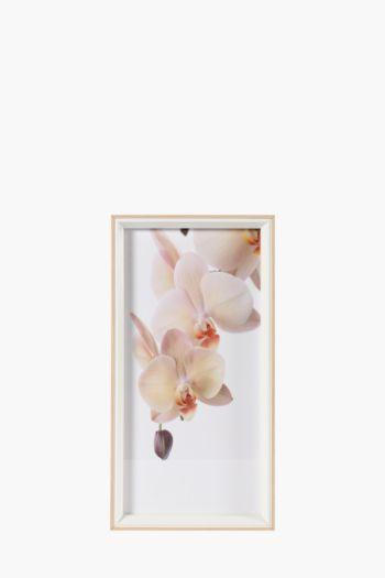 Framed Magnolia 20x40cm Wall Art