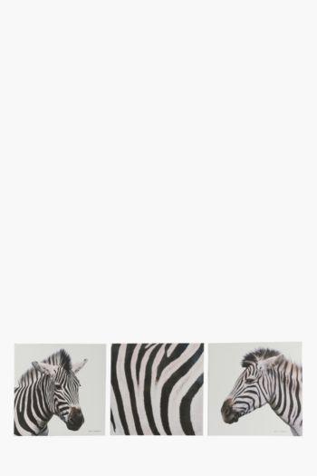 3 Zebra 40x40cm Wall Art