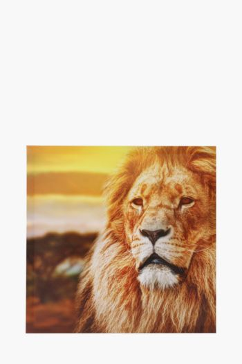 Printed Lion 40x40cm Wall Art