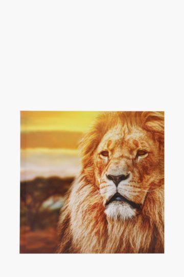 Printed Lion 40x40cm Wall Art