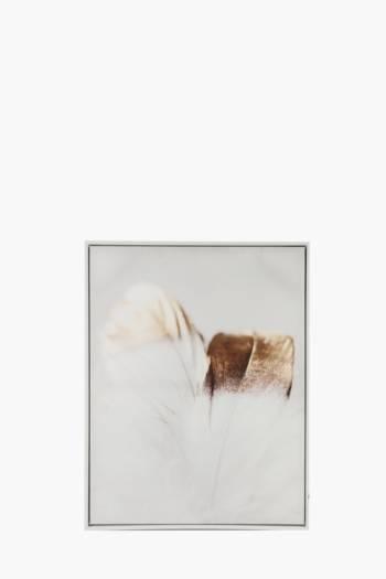 Framed Foil Feather 50x70cm Wall Art