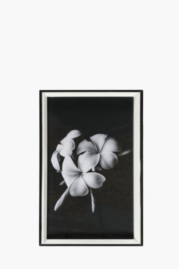Framed Flower 20x40cm Wall Art