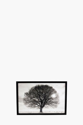 Framed Tree 40x60cm Wall Art