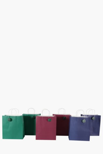 Pack Of 6 Winter Jewels Gift Bags Large