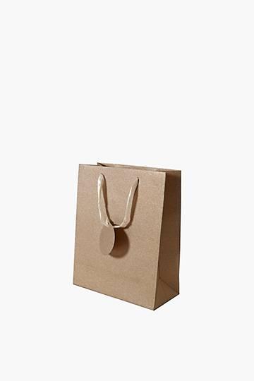 Glitter Gift Bag Medium